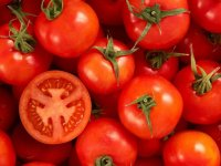 گوجه فرنگی پخته یا خام کدامیک مفیدتر است؟