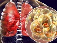 چرا پاسخ بدن افراد به ویروس کووید-۱۹ این قدر متفاوت است؟