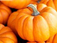 بسته موضوعی 151: آشنایی با کدو حلوایی این نارنجی پرخاصیت