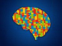 مغز شما چند ساله است؟