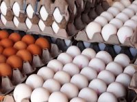 کاهش قیمت هر شانه تخممرغ در بازار