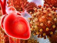 کووید ۱۹ احتمال نارسایی قلبی را افزایش می دهد