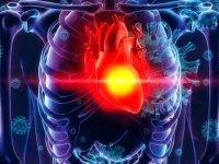 بیماران قلبی در دوران کرونا بهتر است در خانه بمانند