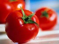 به زودی، گوجه فرنگی 20 هزار تومان می شود!