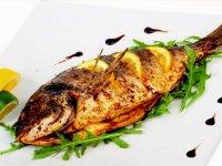 گیاهخواران ماهی دوست