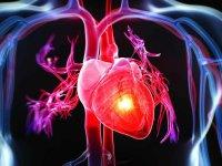 ۴ نشانه احتمالی بیماری های قلبی و عروقی