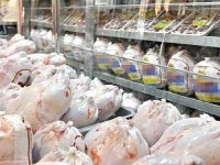 نرخ مصوب مرغ ۳۱ هزار تومان