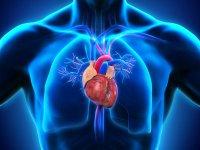 آیا قلب هم به سرطان مبتلا میشود!؟