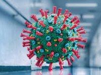 چرا باید کرونای هندی را بیش از انواع دیگر این ویروس جدی گرفت؟