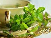 با هضمکنندههای طبیعی غذای بیشتر آشنا شوید