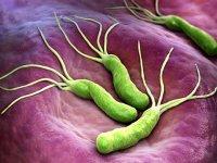 عفونت معده و راهکارهای درمان