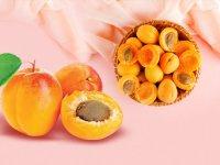 زردآلو؛میوه تابستانه شگفتانگیز