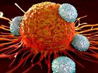 دردسرهای  موادمخدر در درمان سرطان