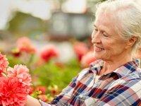 نشاط سالمندی در سایه کار خیر