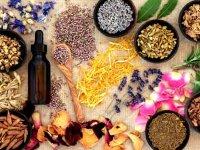 باید و نبایدهای طب سنتی برای بهار