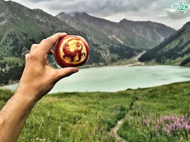 نقش های زیبا روی سیب