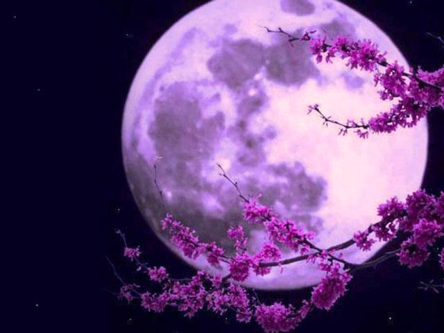 نور ماه