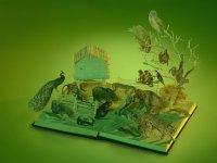 شهر کاغذی کتابها