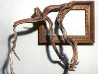 قاب عکس های چوبی