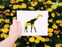 کاردستی های خلاقانه با طبیعت