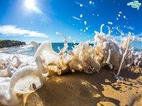 امواج زیبای دریا