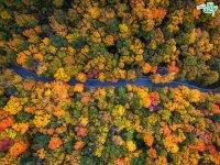 عکس های هوایی زیبا