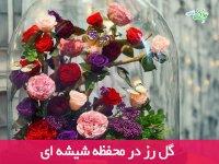 گل رز در محفظه شیشه ای
