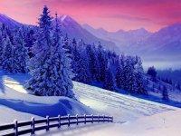 منظره های برفی