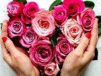 گلدان های سیمانی