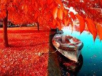 بوی پاییز